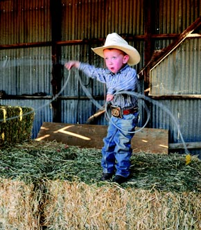 Little Cowboy Roping