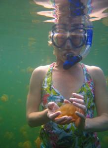 Boat trip - Jellyfish 2