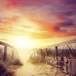The Transcendent Trail