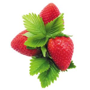 Organic garden strawberry on white background