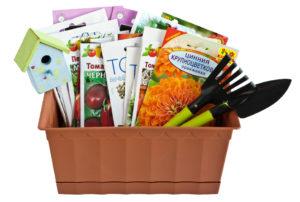 Много разных семян овощей и цветов