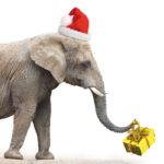 The White Elephant Gift Exchange